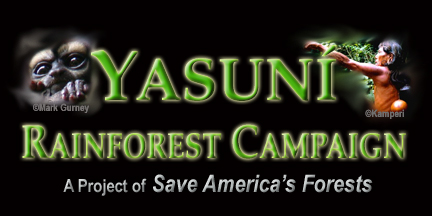 Yasuni Rainforest Campaign - Save America's Forests